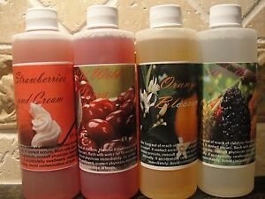 LOT of 4 FRUIT SCENTED~Fragrance Scents for RAINMATE (rainmate made by RAINBOW)