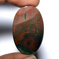 Cts. 40.70 Natural Marvellous Bloodstone Cab Oval Cabochon Loose Gemstone