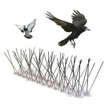 Birds Spikes Stainless Steel Plastic 6m Anti Pigeon Crow Scare Pest Control