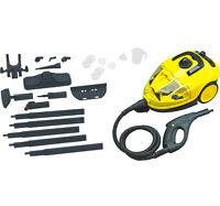 220V Home lampblack steam cleaner car wash floor steam cleaning machine 1.5L Y #