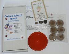 Fairy Flower Seeds, Children's Seed Starter Kit Coleus Wizard Mixed