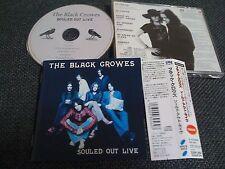 THE BLACK CROWES / souled out live / JAPAN LTD CD OBI