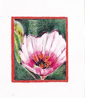 ACEO Original painting:  Blossoms in Pink