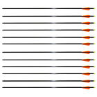 """12 Fiberglass 28 Inches Arrows 28"""" for Compound Archery Bow Screw in Field Point"""