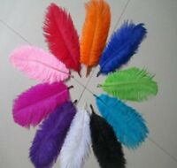 10 Pack  15-20cm Ostrich Feathers Plume Craft Centerpiece Wedding Party Decor