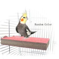 Papagei Hamster Eichhörnchen Käfig Zubehör Sport Spielzeug Farbe zufällig
