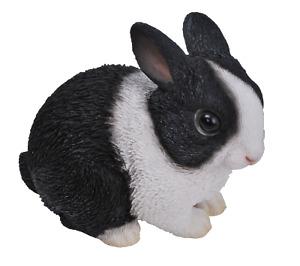 Vivid Arts Baby Dutch Black & White Rabbit   XRL-PR06-F