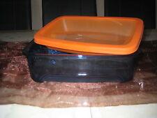 Tupperware Micro-Frost-Behälter 800 ml