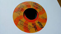 Jerry Butler 45 Never Give You Up/Beside You Mercury 72798 Northern Soul