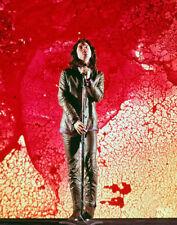 "Jim Morrison The Doors Photo Print 11x14"""