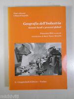 H546 GEOGRAFIA DELL'INDUSTRIA SISTEMI LOCALI E GLOBALI F. DINI GIAPPICHELLI 1995