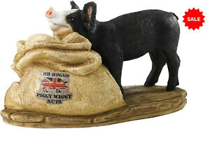 ENESCO Border Fine Arts Kitchy & Co Mr Hogg and Piggy Wiggy Nuts