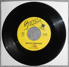 T. RADU - Perfect Stranger What's In A Name, Rare 1979 Punk 45, Plays Great