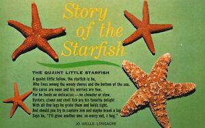 Vintage Postcard Story Of The Quaint Little Starfish By Jo Wells Longacre