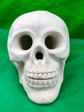 Vintage Human Skull White Plaster Goth Halloween Decoration Collectible