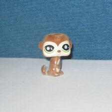 Littlest Pet Shop Fuzzy Meerkat Special Edition #819 Hasbro NEW LOOSE
