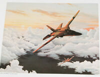 jet airplane camo Air Force Lithograph Art Series 4 PRINT 17x23 d-5 fighter sky