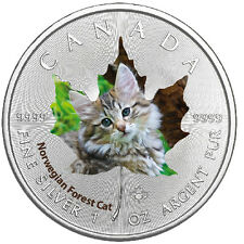 1 Oz Silber Maple Leaf Farbe 2017  Cute Kittens Norwegian Forest Cat Katzen Kana