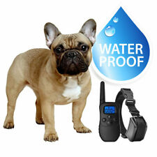 eXuby Small Dog Waterproof Shock Collar, Remote, 2 Straps Great Condition