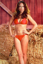 CATHERINE BACH DUKES OF HAZZARD RED BIKINI  POSTER