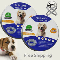 Flea &Tick Collar for Large Dog Over 18 lbs 8 Month Protection 2 Pack Free Ship
