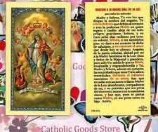 Oracion a la Madre Sma. de la Luz - Spanish - Laminated  Holy Card