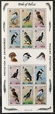 Belize 1980**    Vögel  Birds   Postfrisch MNH