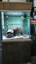65 Gallon Wet/Dry Salt Water Fish Tank and Stand