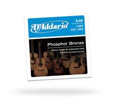 D'Addario Phosphor Bronze Acoustic Guitar Strings EJ16 12/53 From Guitars Wales