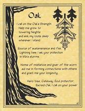 OAK EVOCATION Parchment Page for Book of Shadows, Altar!