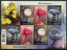 Belarus Nature Stamps 2020 MNH Myxomecetes Slime Molds 6v M/S