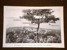 Foto Le bianche case di Anacapri