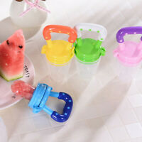 Baby Fruit Feeder Pacifier Infant Silicone Teething Toy | Fresh Food