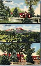 TRINIDAD, Colorado  CO   Roadside  CAWTHON TRINIDAD COURT  c1940s Linen Postcard