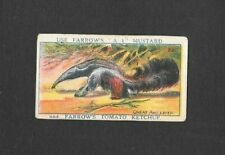 """Farrows 1925 Scarcer ( Animals ) Type Card """""""" # 22 Giant Ant Eater """""""""""