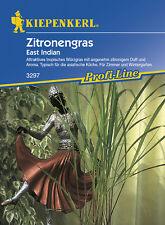 Zitronengras * East Indian * MHD 01/20 Kiepenkerl 3297