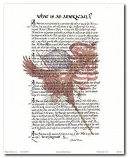 """What Is an American"" Motivational & Inspirational Wall Art Picture 8x10"