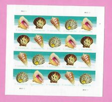 *USPS Seashells.  Mint Sheet of Postcard Stamps. Forever Postcard Stamps.