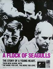 A Flock Of Seagulls 1984 Story Of A Young Heart Original Promo Poster