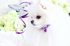 NEW! Luxury Princess Purple Braided Pet Collar + bell Dogs Cats Enchanted Pets