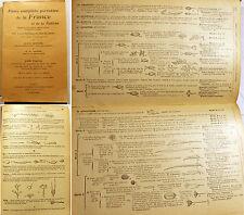 BOTANIQUE/FLORE PORTATIVE DE FRANCE ET DE SUISSE/BONNIER-LAYENS/1937/5338 FIGS