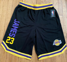 Lebron James #23 NBA LA Lakers Logo Basketball Shorts Men's XL (black)