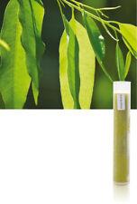 Aroma Sense Aroma Gelfilter EUKALYPTUS für Duschbrausen MAX und SPA