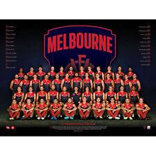 AFL 2017 Team Melbourne Demons POSTER 60x80cm NEW Aussie Football League Players