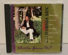 FUTURE CALIFORNIA MIX WHATCHA GONNA DO? 1993 MEGA RARE HIP-HOP R&B SWING CD