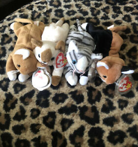 Ty beanie babie, Lot of 4 Cats, 1990s, With Tags!