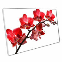 Print on Canvas red orchids Ready to Hang canvas Wall Art 30x20 Inch