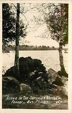Minnesota, MN, Ely, Lake Scene in Superior National Forest Real Photo Postcard
