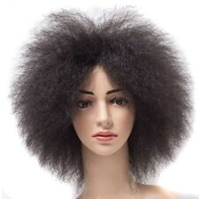 Feibin Synthetic Black Full Head Afro Short Wig For Black Women Curly Hair