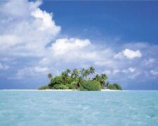 TREASURE ISLAND - TROPICAL BEACH POSTER - 16x20 OCEAN 6912